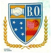 ADESIVO- BO